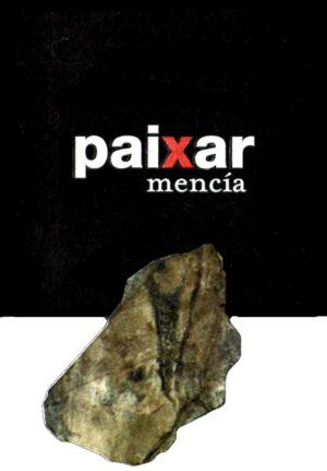 Bodegas y Vinedos Paixar 2011
